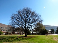 Main Square, Clarens