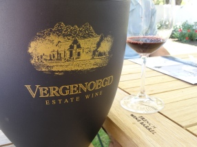 Vergenoegd Vineyard